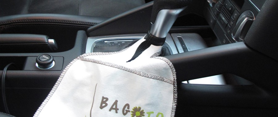 bagoto bamboo car
